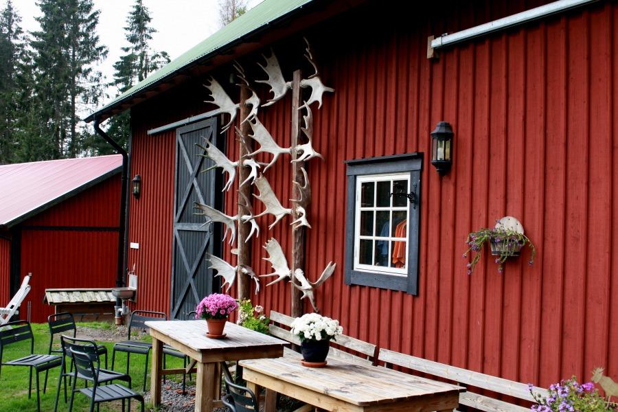 Zweden: Een bezoek aan Virum Älgpark